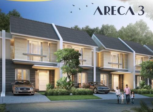 Areca 3